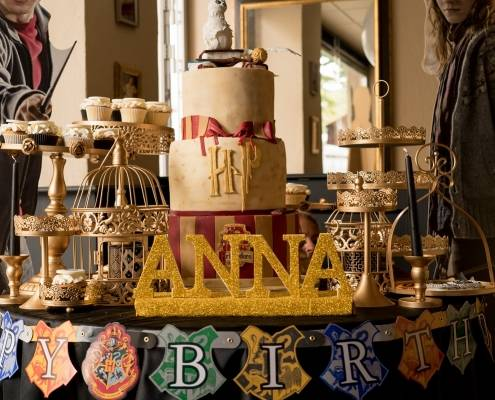 Harry Potter cake Vicenza